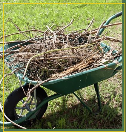 Les travaux de jardinage et d'extérieur